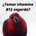 Loro preguntandose si la vitamina B12 engorda